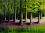 "Forest Scene - Oil on Board - size: 5""x7"""